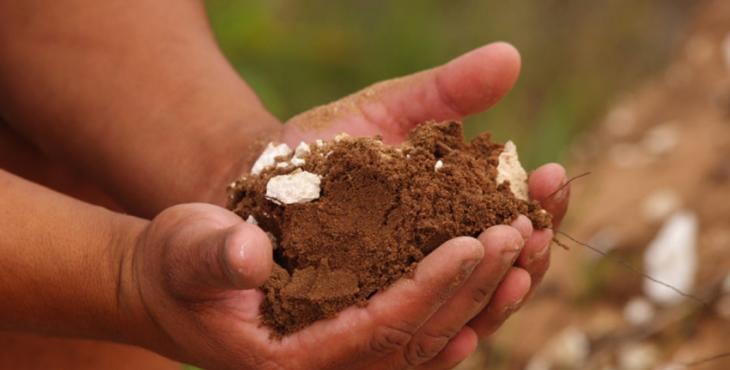 World Soil